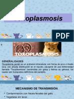 toxoplasmosisfinal-140905164427-phpapp01