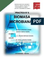 PRACTICA N° 7 BIOMASA.docx