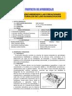 21260251-Proyecto-de-Aprendizaje-Markawuamachuco.pdf