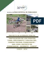 PIP Transportes - Puentes - San Juan