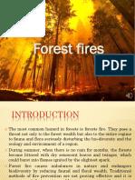 New Microsoft PowerPoint Presentation (4)