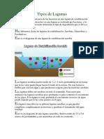 Tipos de Lagunas.pdf
