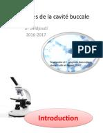 Protozoaires de La Cavité Buccale