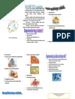 Leaflet-DM.doc