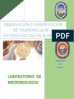 Salmonella y E. Coli