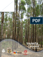 Sector Forestal Invierta en Colombia