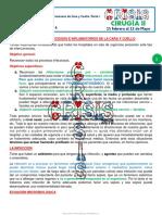 17.-Procesos-Infeccioos-I.-1G