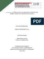 INFORME FINAL COMPE. GERE.  V3 (1).pdf