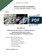 Casi Final Informe Agroindustria