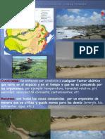 Costa y Biodiversidad 2016