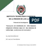 Propuesta Chile Habanero 2010