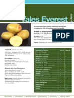Potato Vales Everest