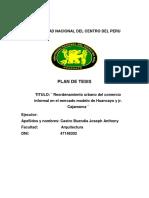 Plan de Tesis-borrador 01
