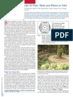 PalmSoilRecomendation.pdf