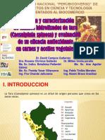 68535103-Obtencion-y-caracterizacion-de-taninos-David-Campos.pdf