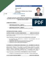 Curriculum Vitae-DOMINGUEZ MALO VICTOR FELIPE.doc