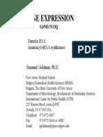 2.tRNA&synthetases