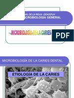 11 Microbiología de La Caries