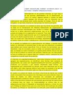 Ensayo 3_Diseño Organizacional