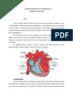 Anatomia Şi Fiziologia Aparatului Cardiovascular -Referat