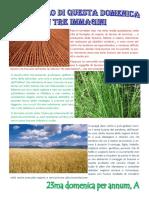 Vangelo in immagini - 23ma domenica per annum A.pdf