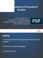 Anatomy Pediatric Shoulder