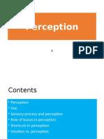 5 Perception.pptx
