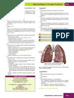 TNM cáncer de pulmón actualizado