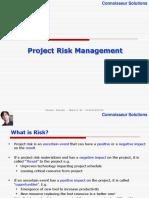11_ProjectRiskManagement