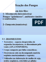 aula2classificaodosfungos-090925173725-phpapp01