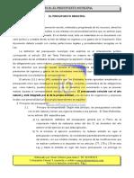 T16. Los Presupuestos Municipales