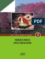 MANUAL PRODUÇÃO DE MUDAS DE ESPÉCIES FLORESTAIS NATIVAS.pdf