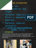 Ley Del Trabajador Domestico Copia
