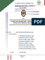 INFORME DE LA ARCILLA CAOLINITA.docx