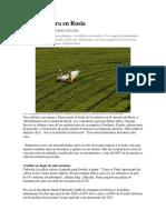 La Agricultura en Rusia
