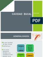 cavidadbucal-100615093409-phpapp02majo-131022222253-phpapp02.pptx