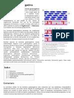 Bacteria Gramnegativa