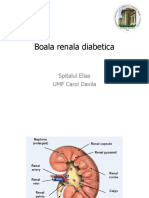 Boala renala diabetica - 3 nov -dr.Reghina.pdf