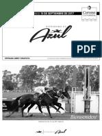 AZUL_100917_Programa 23x14 (1)