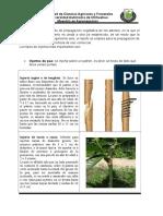 50678742-TIPOS-DE-INJERTOS.doc