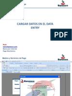 Como Cargar El Data Entry y Envíos de Archivo Ult