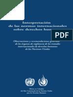 Interpretacion de Las Normas Internacionales Sobre Los Derechos Humanos