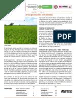 insumos_factores_de_produccion_junio_2013.pdf