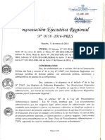 TUPA 2016 GORE LIMA.pdf