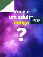 teste-indigo.pdf