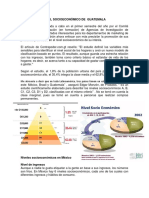 ACTIVIDADES ECONÓMICAS DE GUATEMALA.docx