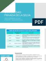 Universidad Privada de La Selva - Ing Software