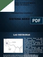 sistema-nervisoso-completo-yenny.pptx