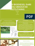 Tugas PIK Biodiesel dari Ketiau (Jessica CHE 1400610019).pdf