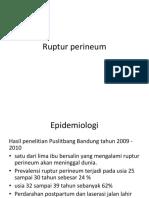 Pleno Ruptur Perineum Angga